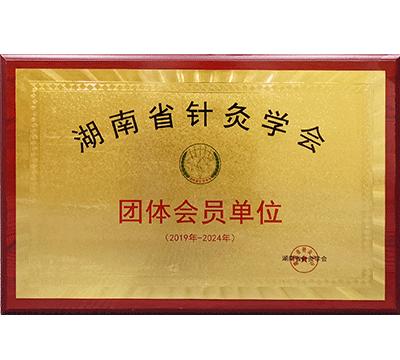湖南省针灸学会团体会员单位